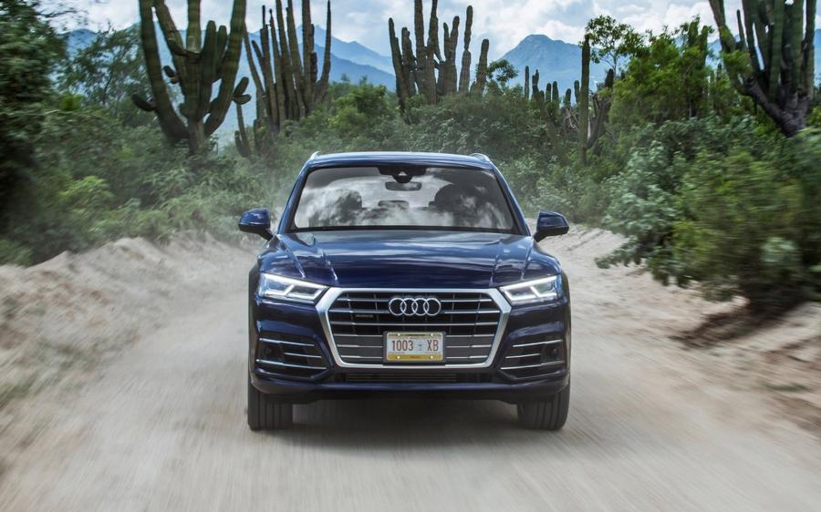 Τι κοινό έχει ένα μέρος της πανίδας με το quattro της Audi